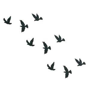 tatouage ephemere temporaire oiseaux lil birds