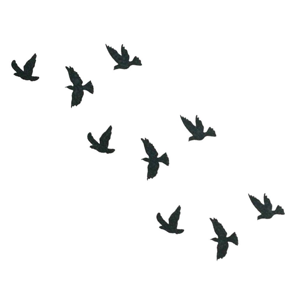 tatouage ph m re temporaire oiseaux lil birds routine. Black Bedroom Furniture Sets. Home Design Ideas